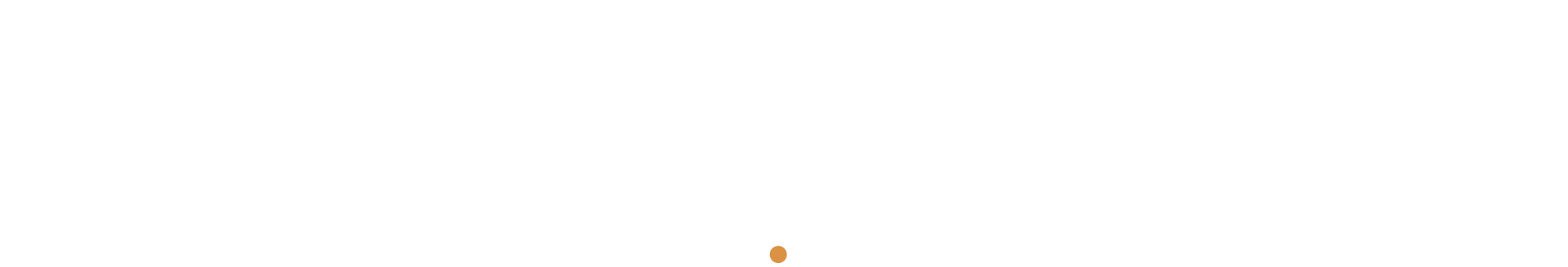 Clavister tagline logo white